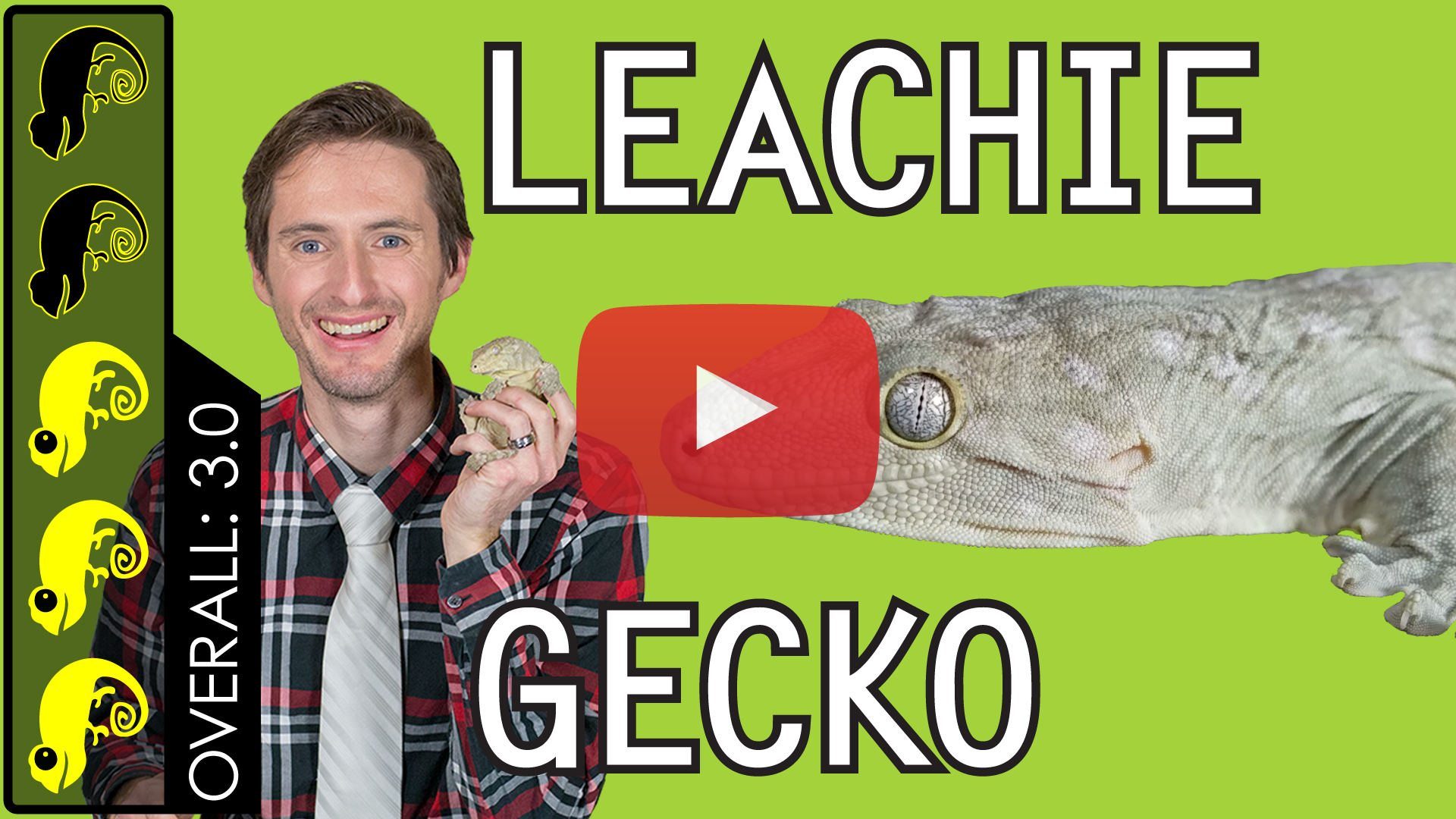 Leachie-Gecko-Overview-Thumbnail-Play