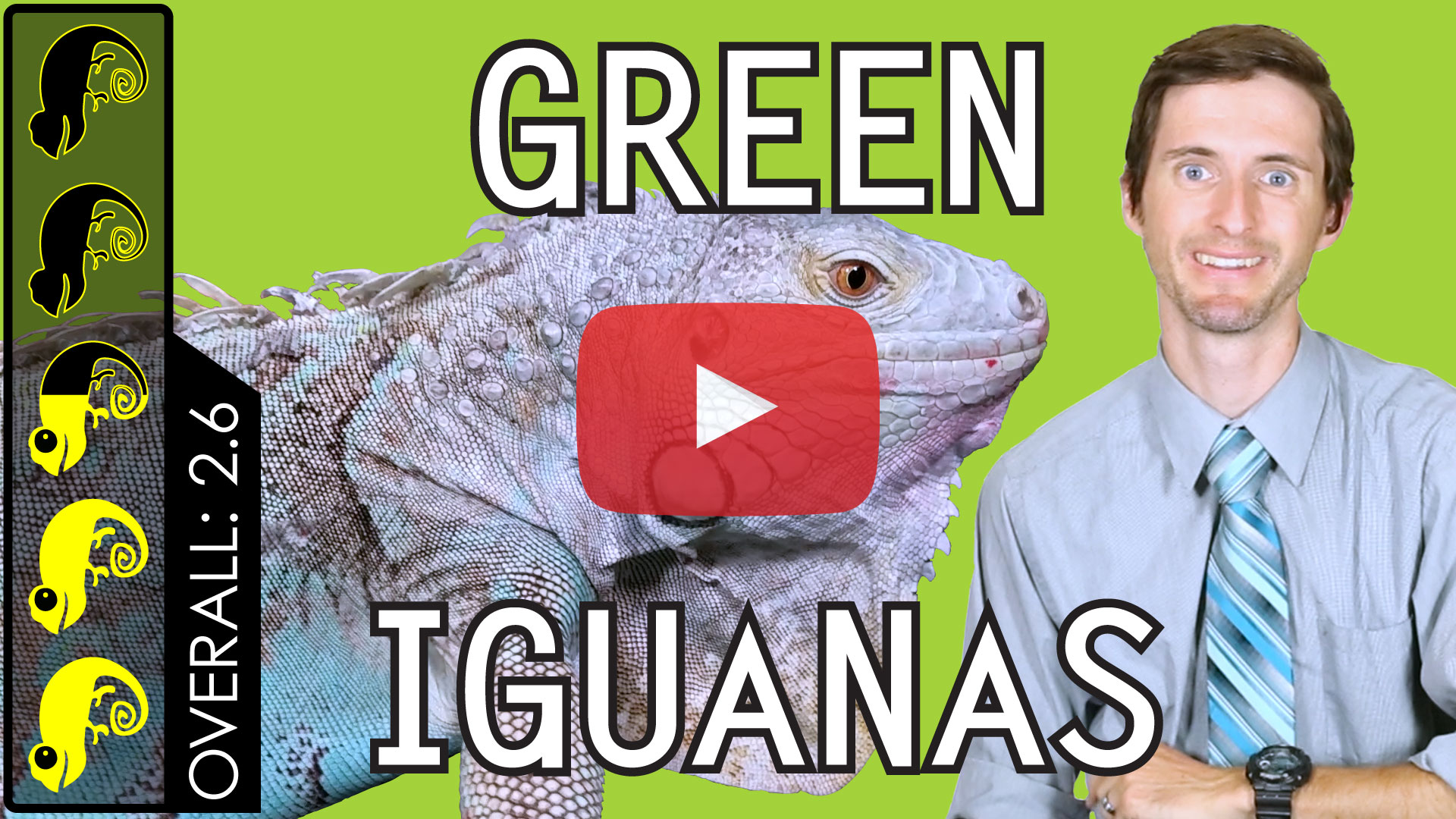 Green-Iguana-Overview-Thumbnail-Play