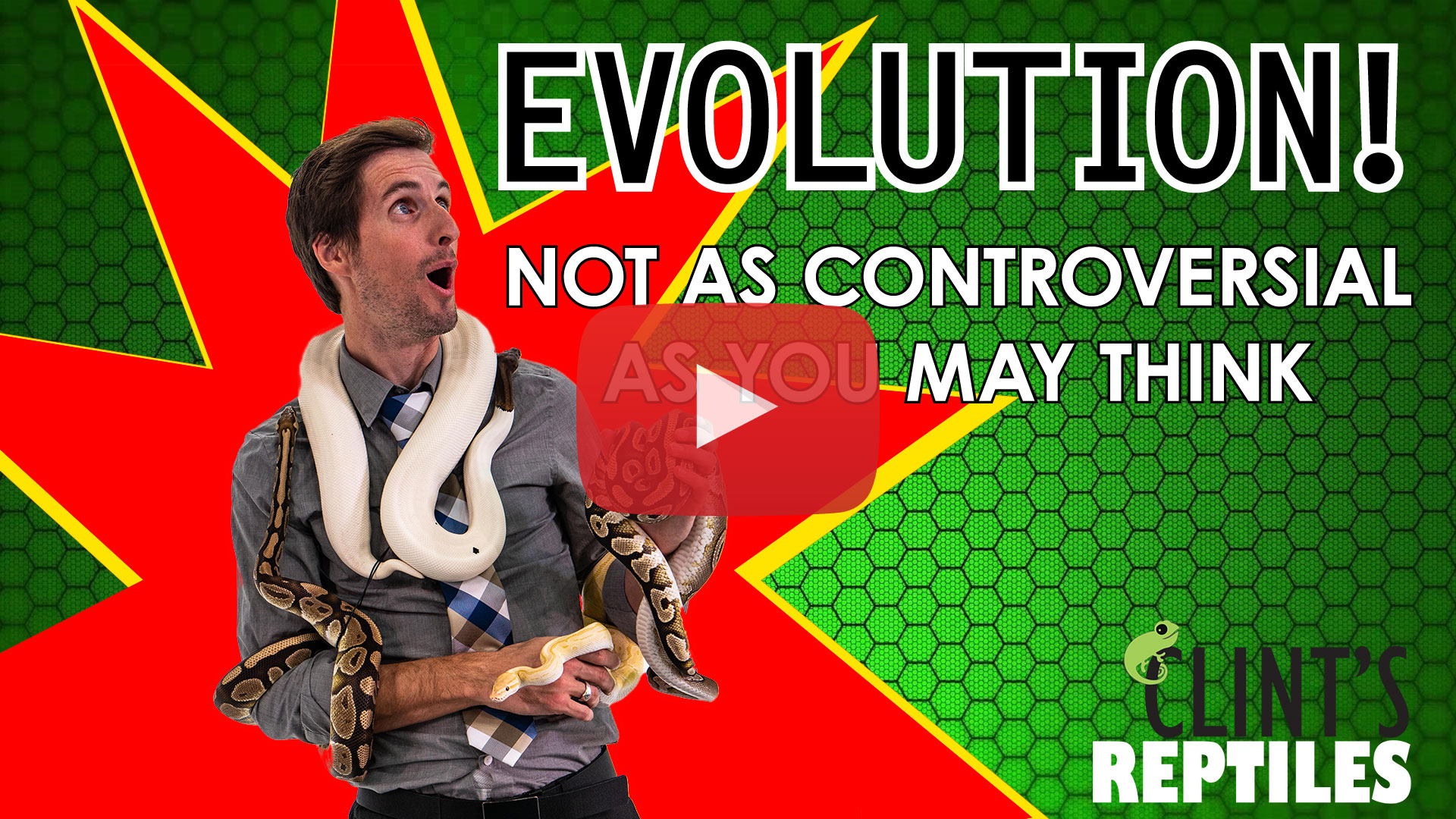 What-Is-Evolution
